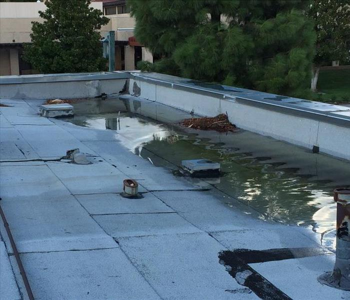 A Flooded Roof Due to A Plugged Drain During A Storm at Our Local Business Chamber (1)
