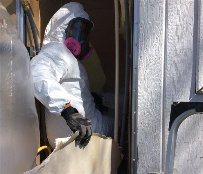 Mold Remediation What You Can Do Until help Arrives