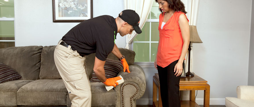 Beaumont, CA carpet upholstery cleaning