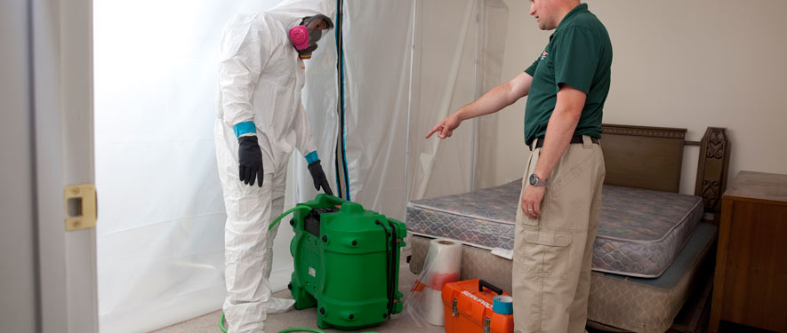 Beaumont, CA mold removal process